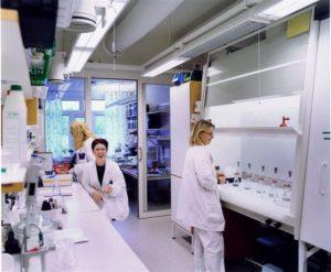 Un estudio revela una nueva forma de utilizar virus para combatir el cáncer