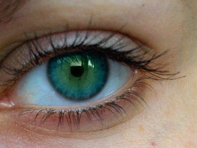Descubren compuesto natural contra la retinopatía diabetica.