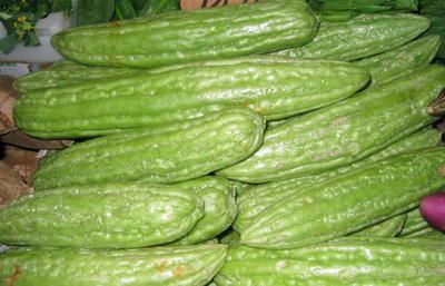 El melón amargo es común en la India y China y se muestra prometedor contra el cáncer de mama