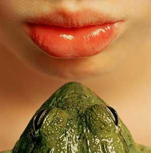 La piel de las ranas contiene secreciones que pueden conducir a nuevos antibióticos para combatir infecciones